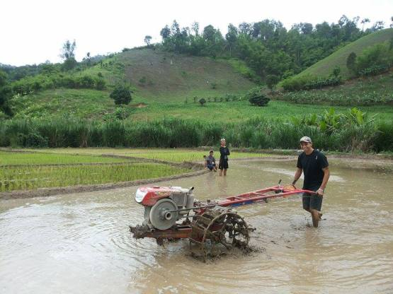 Jon loves to plow the rice fields!